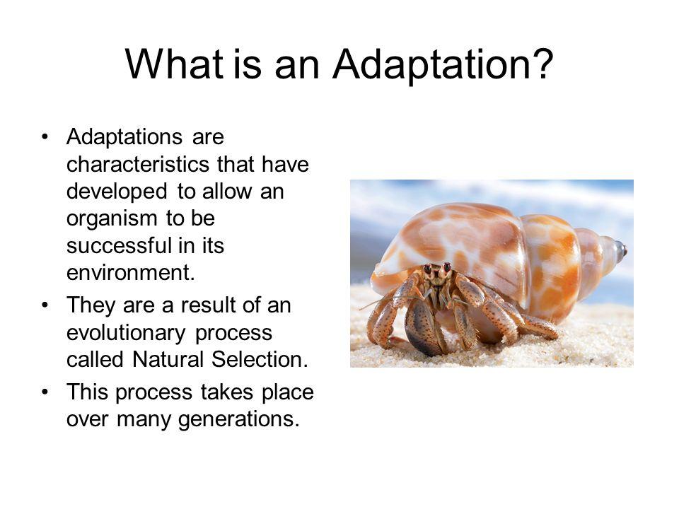 Characteristics Of Natural Selection
