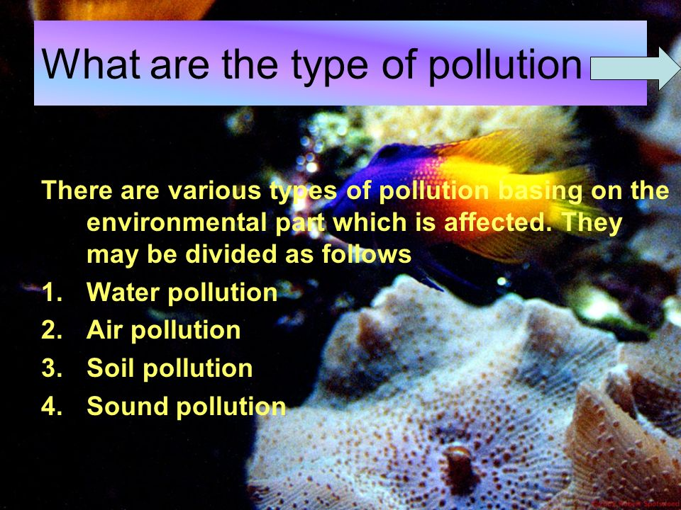 how many types of pollution is there