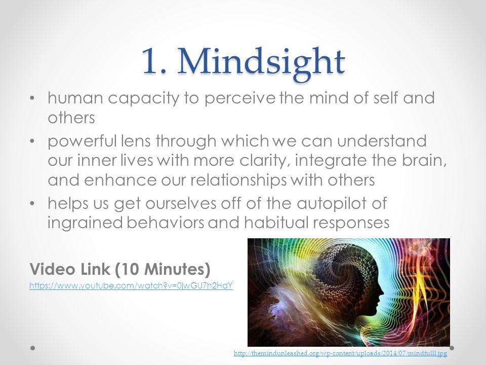 1. Mindsight human capacity to perceive the mind of self and others