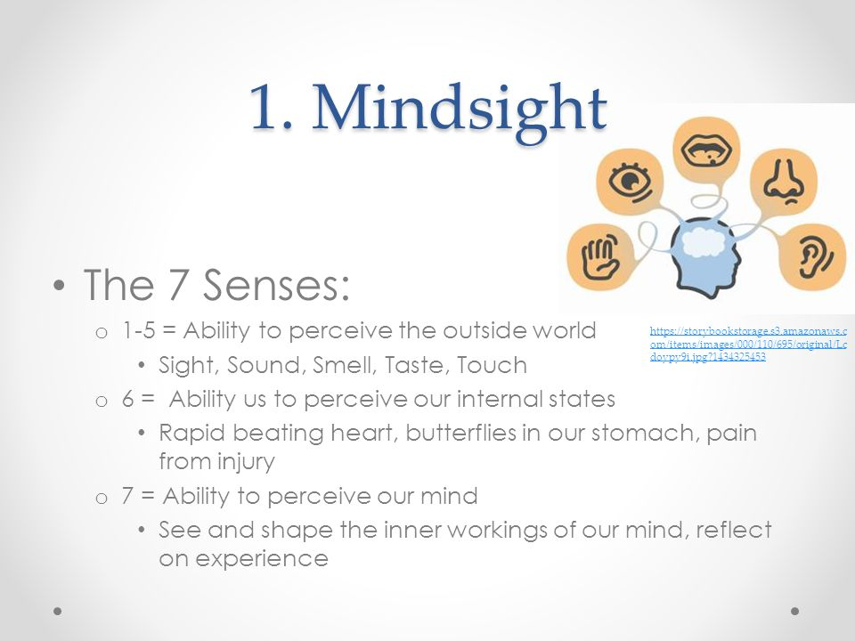 1. Mindsight The 7 Senses: 1-5 = Ability to perceive the outside world