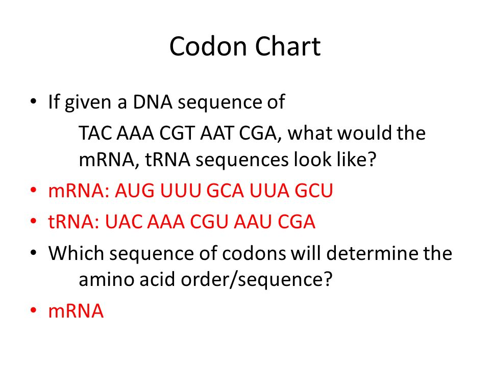 Codon Chart If Given A Dna Sequence Of