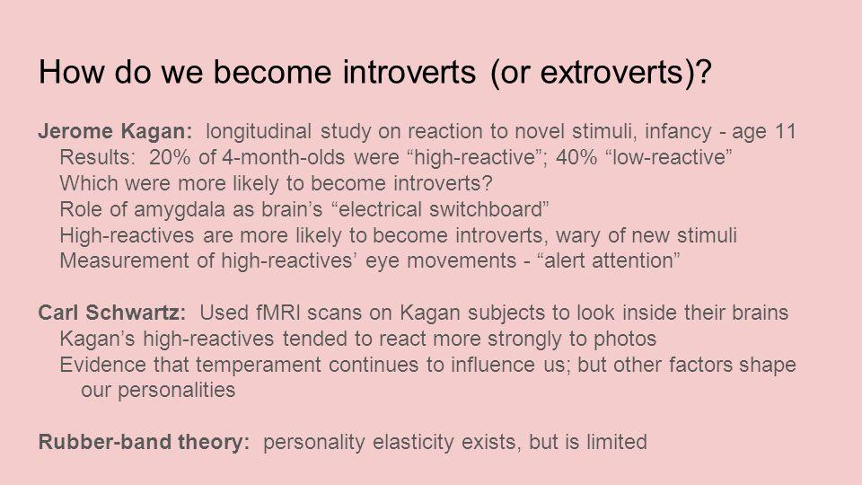 kagan theory