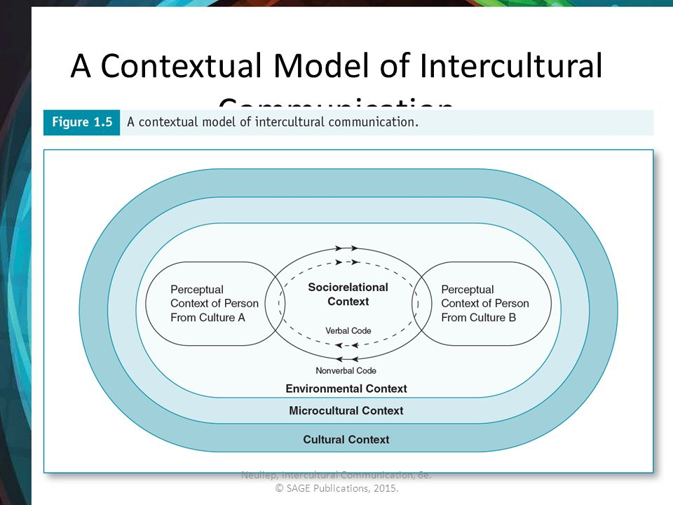 The Microcultural Context - ppt video online download
