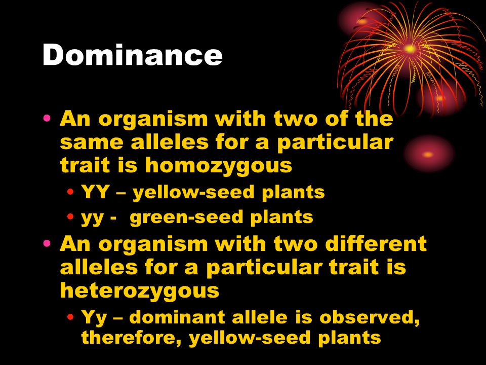 Dominance An organism with two of the same alleles for a particular trait is homozygous. YY – yellow-seed plants.