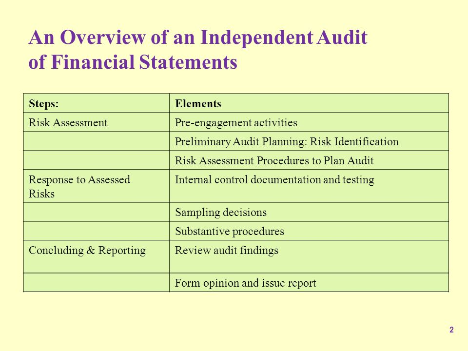 Preliminary audit plan
