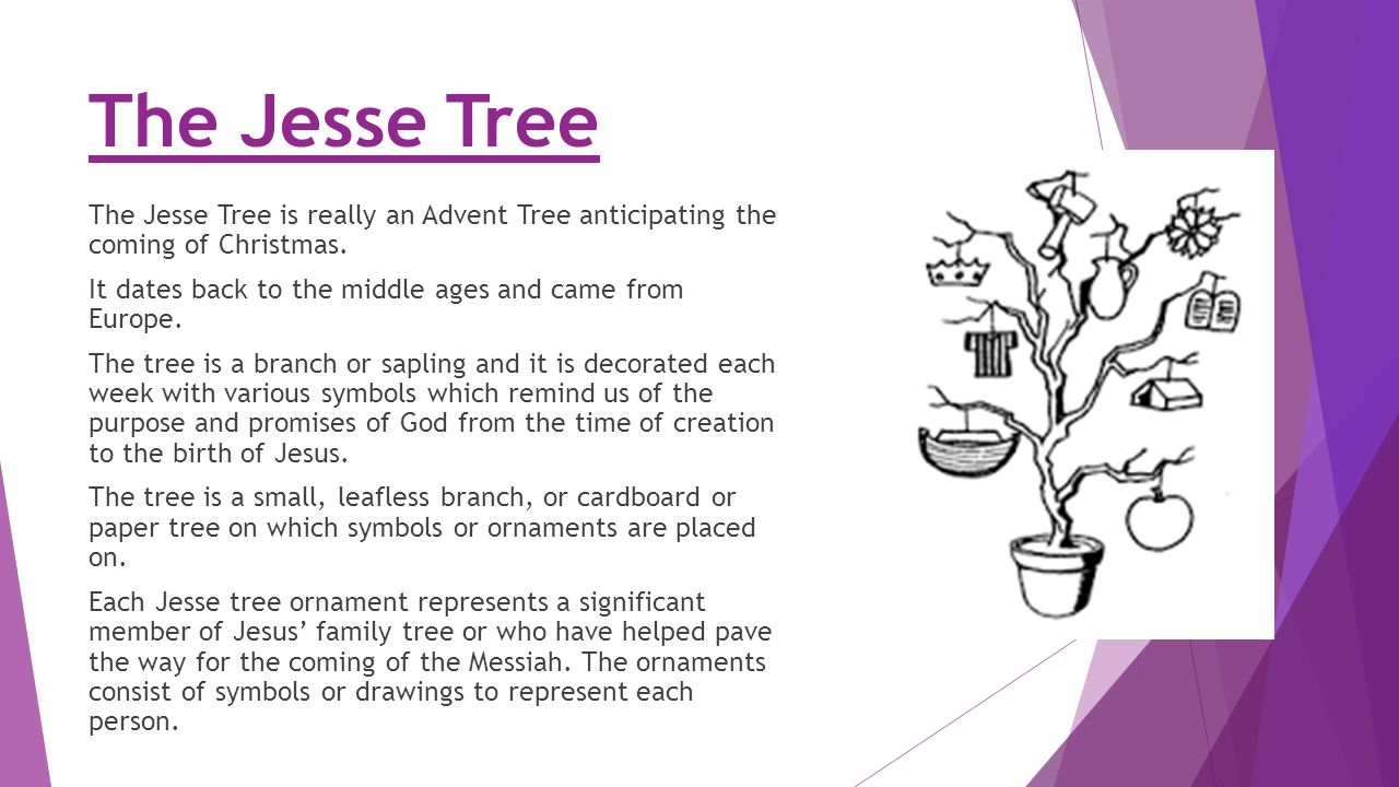 The Jesse Tree Ppt Video Online Download