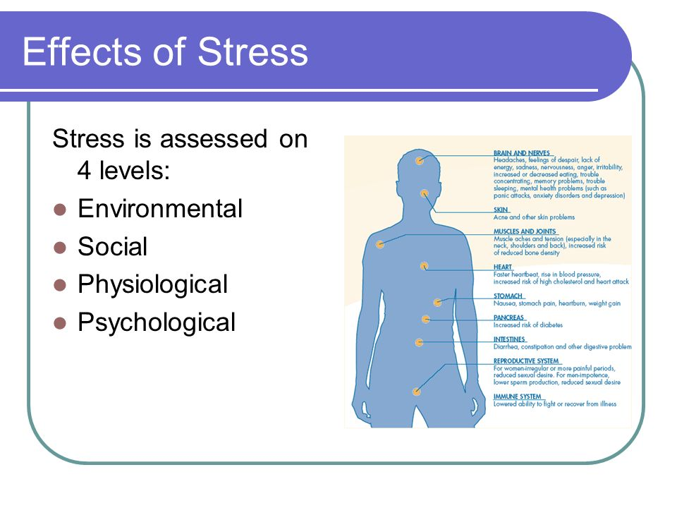 the effect of stress on university An article draws on the existing scientific literature to explain the positive effects of mindfulness meditation that help deal with the mental and physiological effects of stress ( perspectives on psychological science, november 2011 6(6): 537-559) read more.