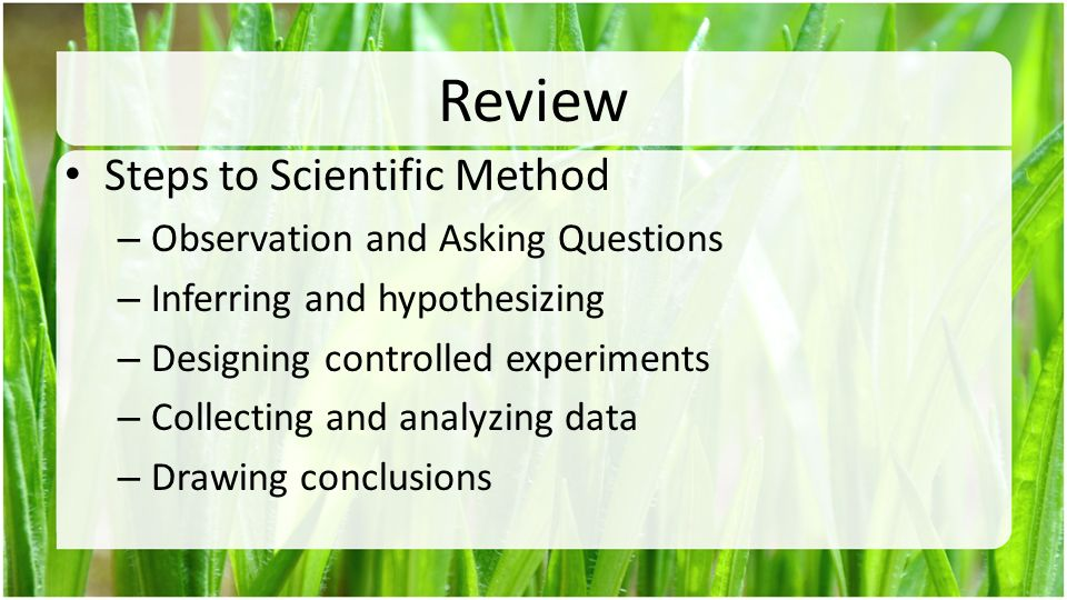 Review Steps to Scientific Method Observation and Asking Questions