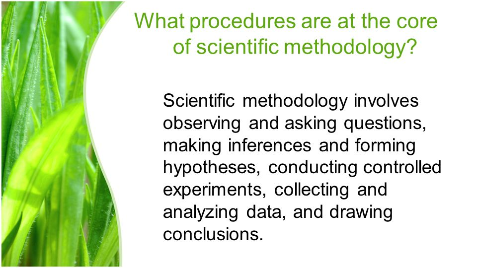 What procedures are at the core of scientific methodology