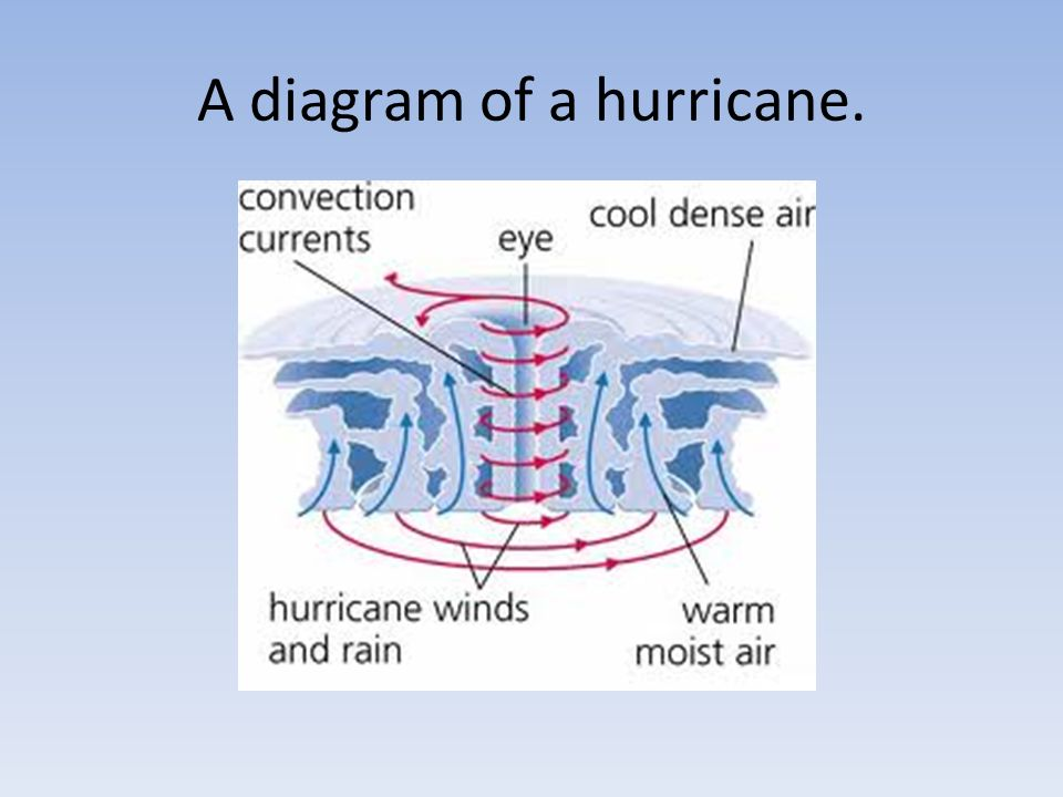 By Kate Harrison Myp 2 Hurricane Assessment Ppt Video Online Download