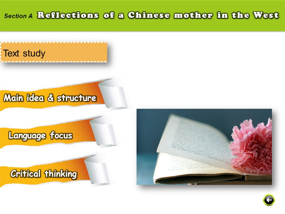 Text study Reflections of a Chinese mother in the West