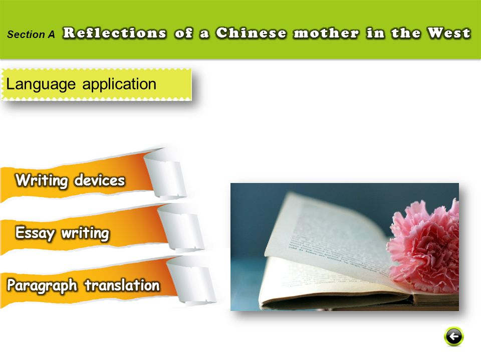 Language application Reflections of a Chinese mother in the West