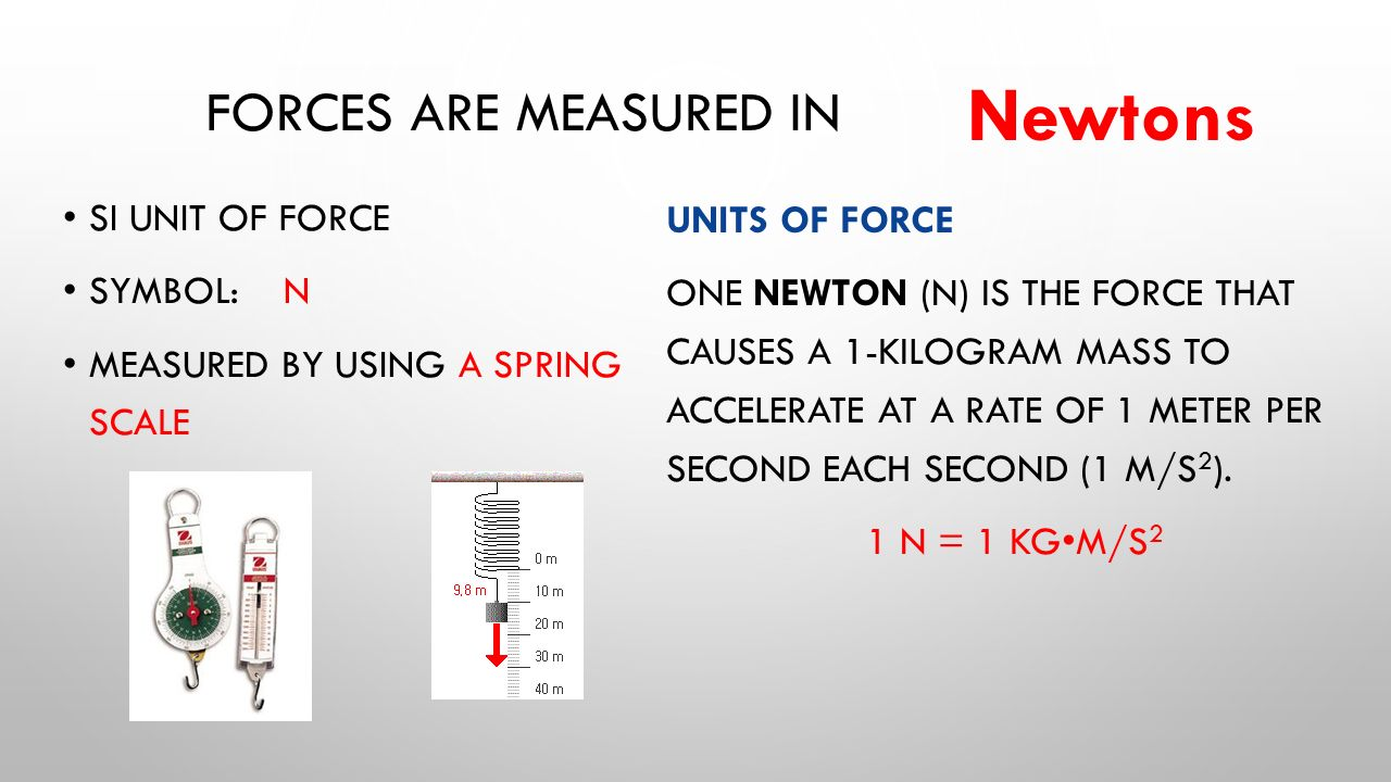 Image result for forces are measured in newtons