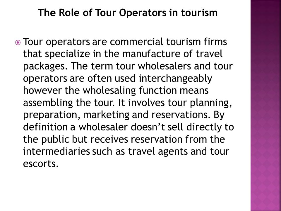 Tourism & TRAVEL SECTOR Role of Tourism Organizations - ppt