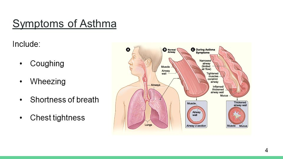symptoms of asthma include: coughing wheezing shortness of breath