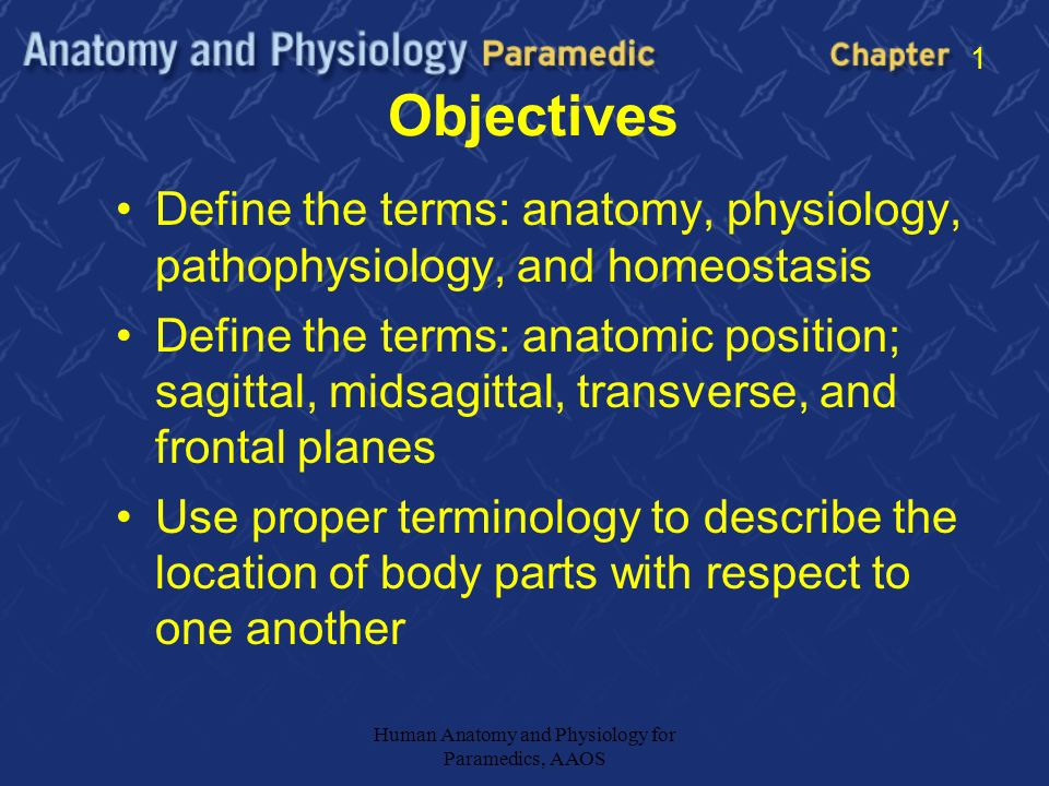 Anatomic Definitions 1 * Introduce Chapter 1 Goals - ppt download