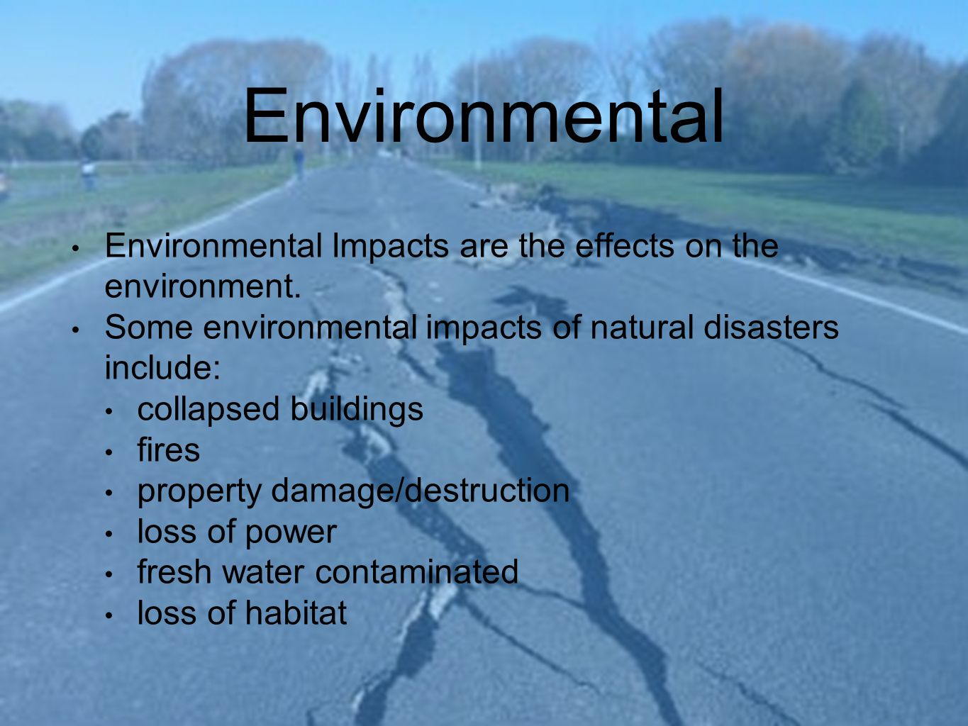 Impact Of Natural Disasters On Business