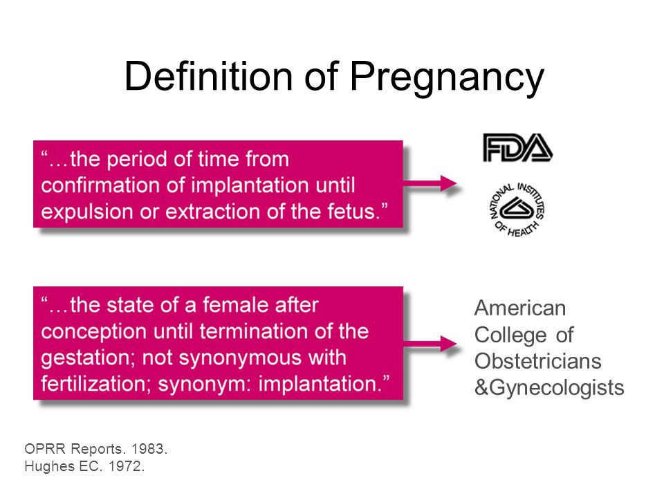 Obstetrics Definition