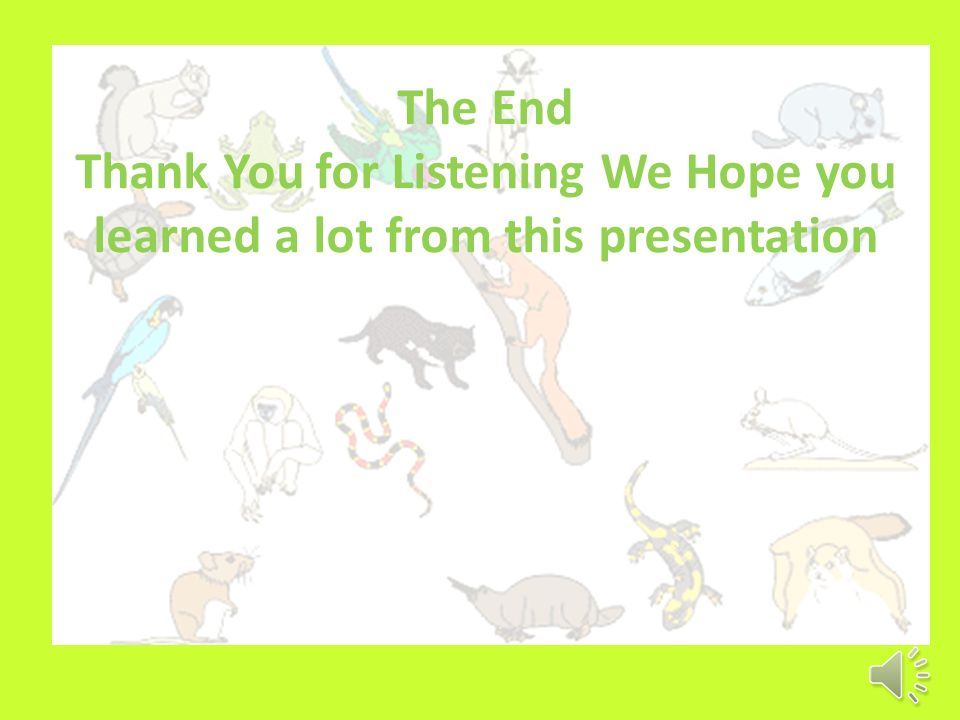 The End Thank You for Listening We Hope you learned a lot from this presentation
