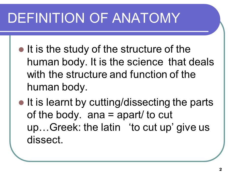 Introduction To Anatomy Anatomical Terms Planes Movements