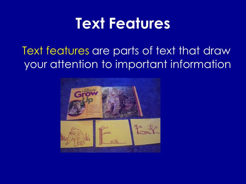 Text Features Text features are parts of text that draw your attention to important information