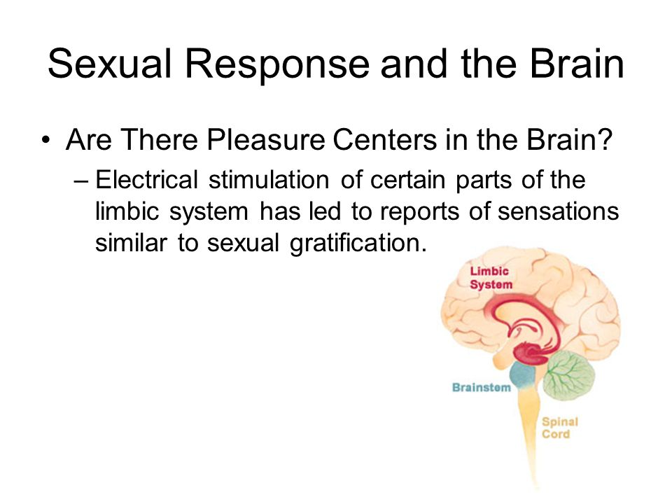 Sexual response in the brain