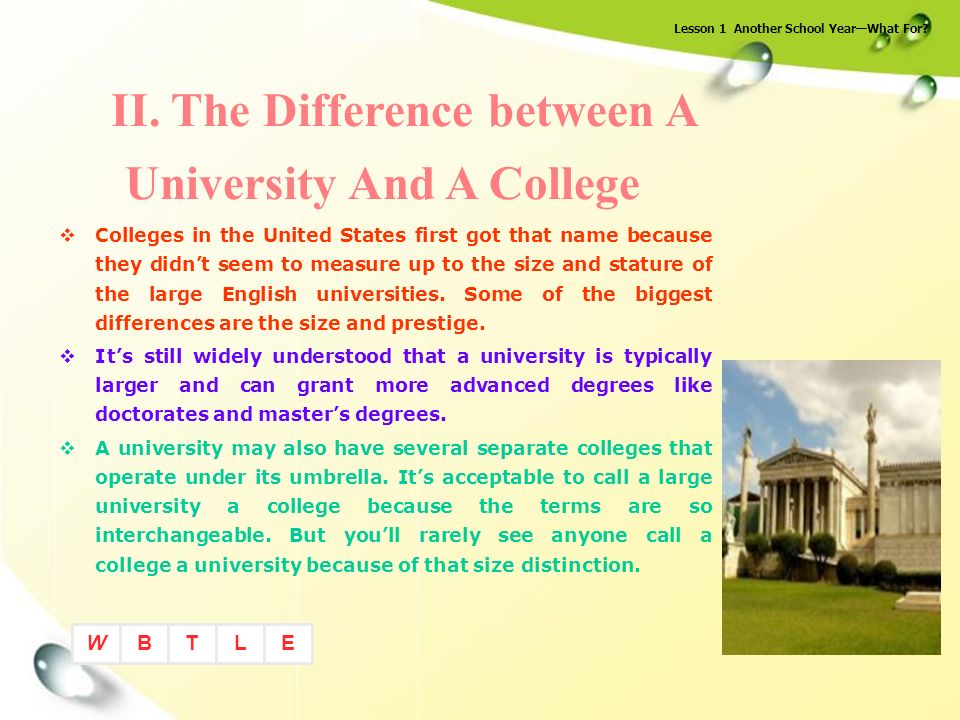 what difference between university and college