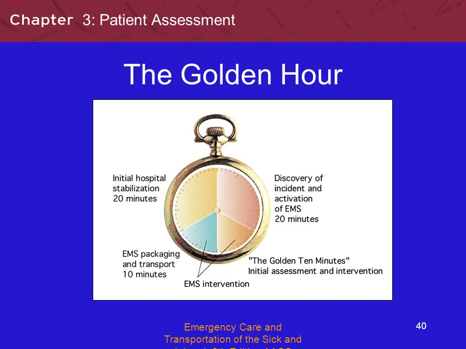 Section 3 Patient Assessment Ppt Video Online Download