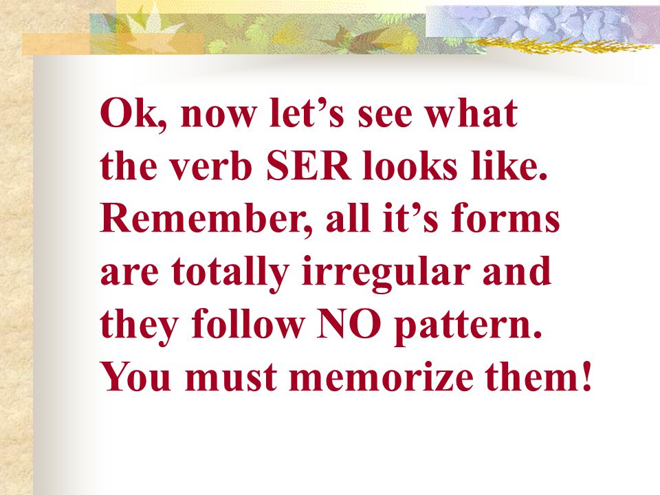 Ok, now let's see what the verb SER looks like. Remember, all it's forms. are totally irregular and.