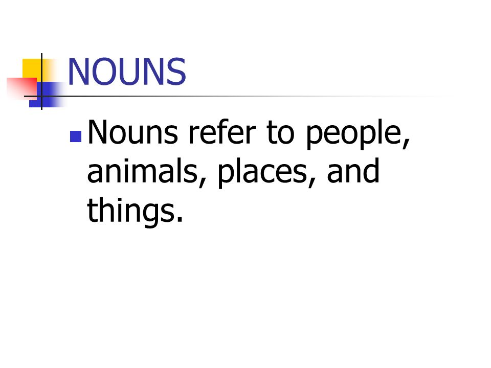 NOUNS Nouns refer to people, animals, places, and things.