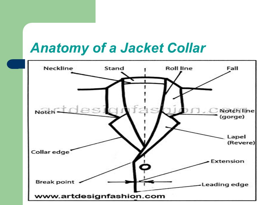 Definition, Anatomy of Shirt & Jacket collar, Types of Collar. - ppt ...