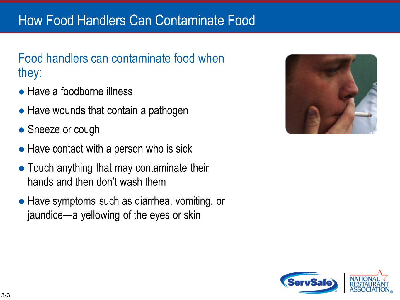 The Safe Food Handler Objectives Ppt Video Online Download