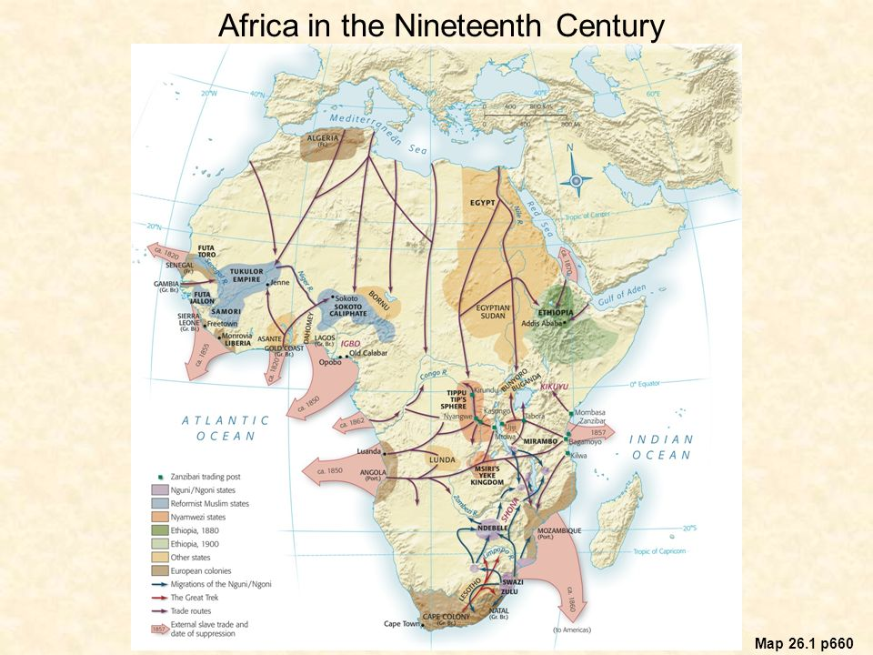 Africa in the Nineteenth Century