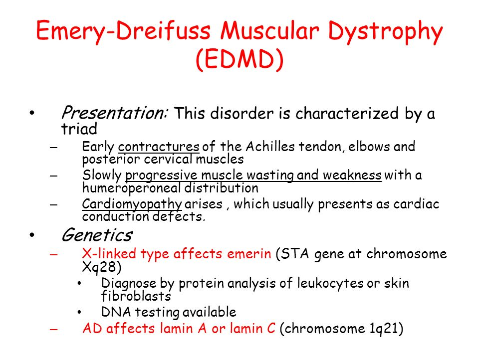 Muscular Dystrophies Ppt Video Online Download