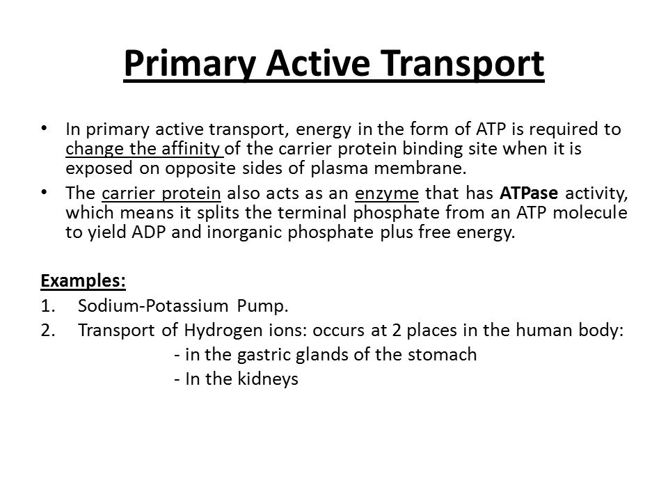 Transport Across Cell Membrane Ii Ppt Video Online Download