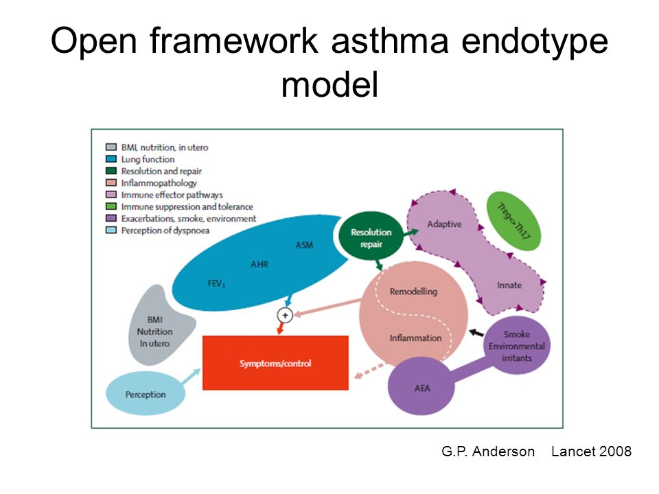 Asthma Diagram | Reallistick Diagrams Of Asthma Block And Schematic Diagrams