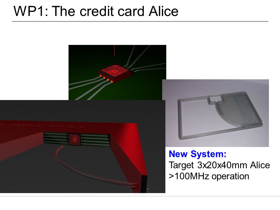 WP1: The credit card Alice