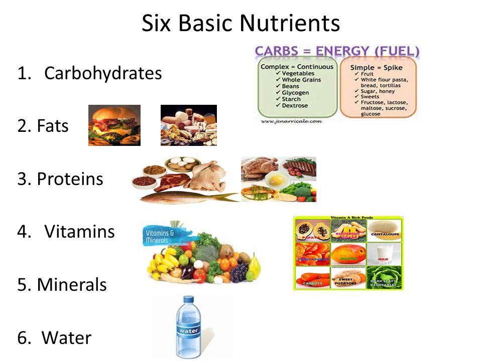 Six Basic Nutrients Carbohydrates  Proteins Vitamins