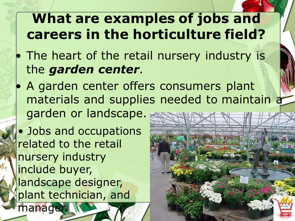 What Are Examples Of Jobs And Careers In The Horticulture Field