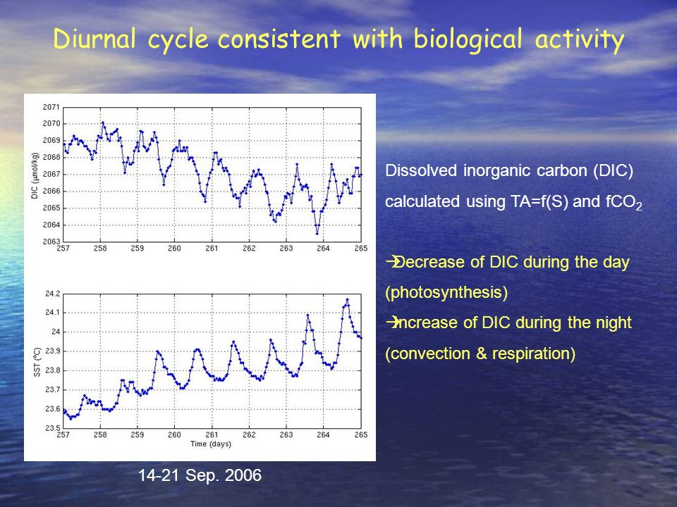 Diurnal cycle consistent with biological activity