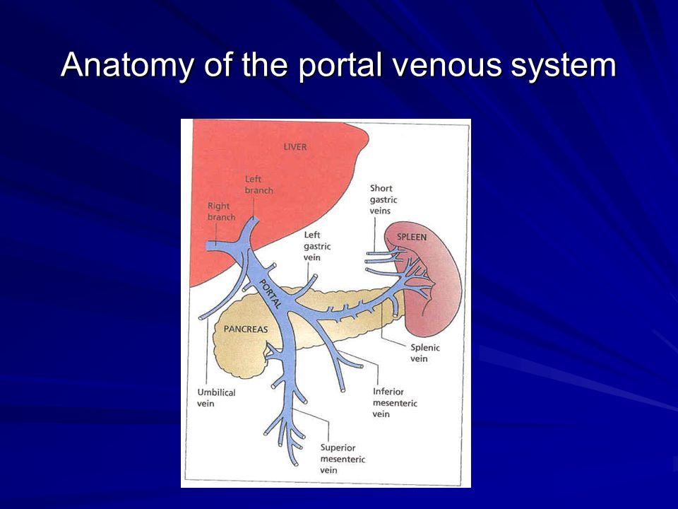 Famous Portal Vein System Anatomy Festooning - Human Anatomy Images ...