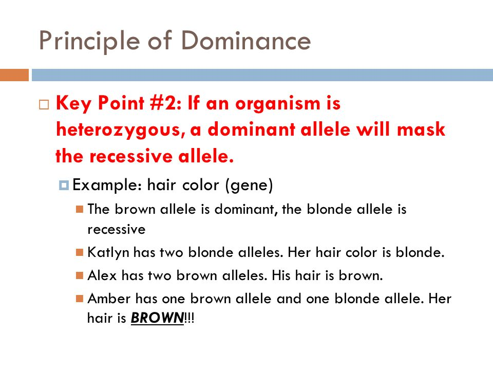 Dominant Recessive Heterozygous Homozygous Ppt Video Online