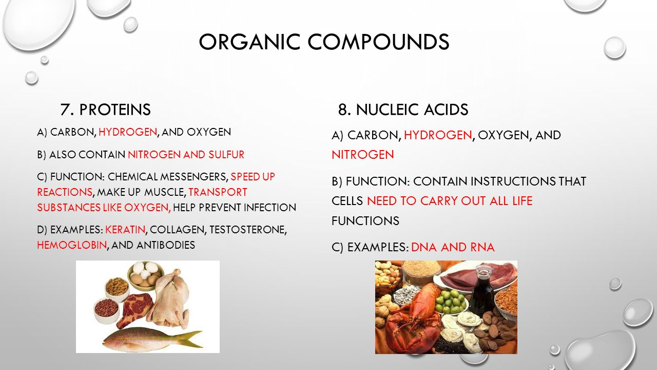 Difference between organic and inorganic compounds key differences.
