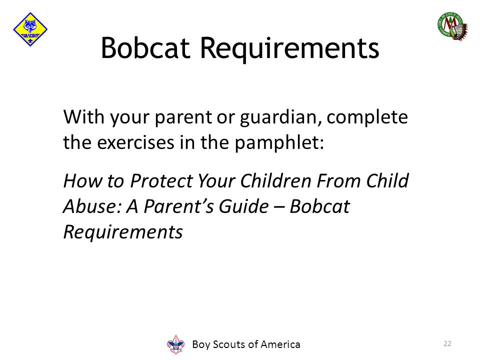 Cub Scout Leader Position Specific Training Ppt Video