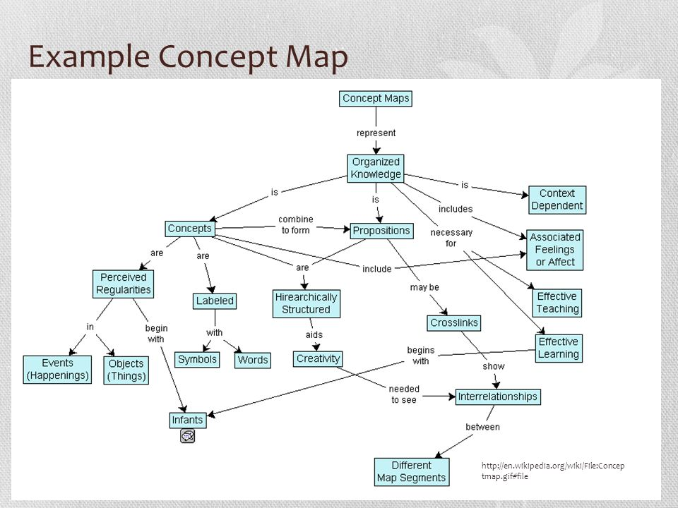 Biology Concept Mapping Guide Ppt Video Online Download