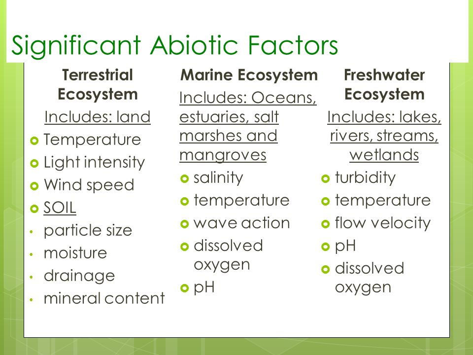 freshwater ecosystem abiotic factors