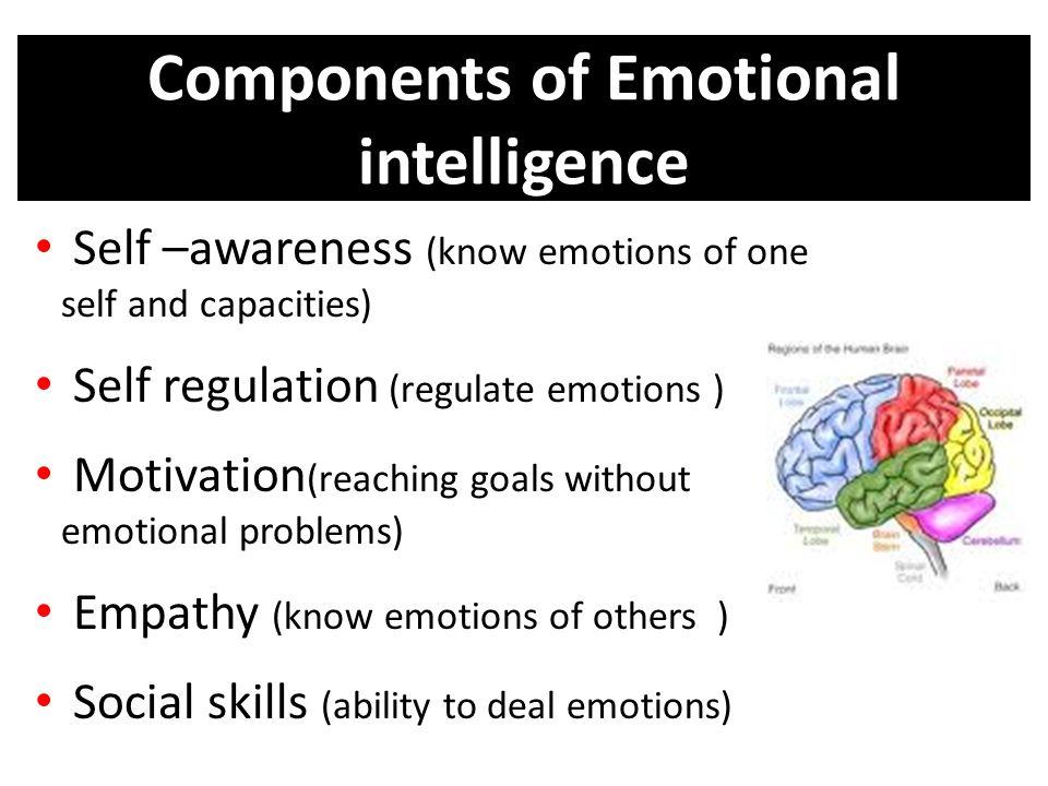 Emotional intelligence (ei).