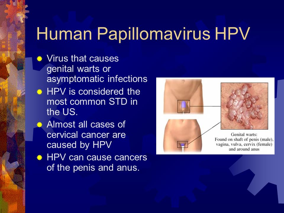 Ch  25 Lesson 2 Common STIs  - ppt video online download