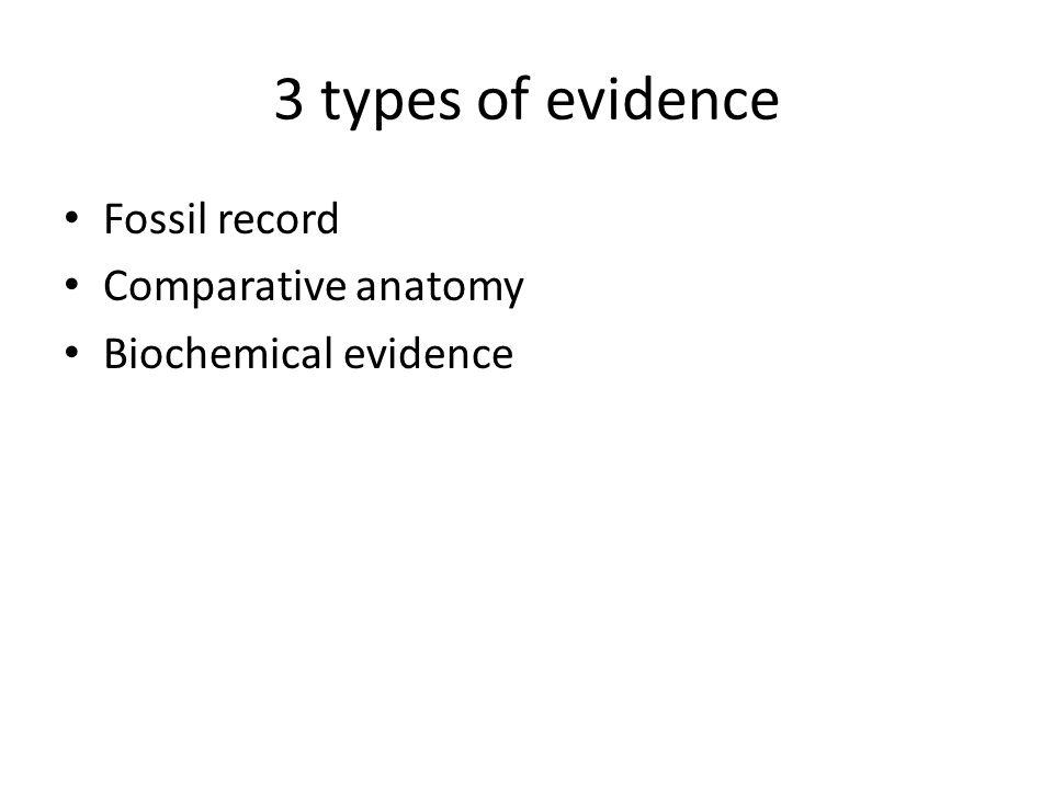 Evidences For Evolution Ppt Video Online Download