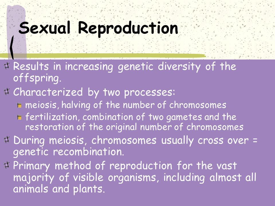 Crossing over usually occurs during asexual reproduction
